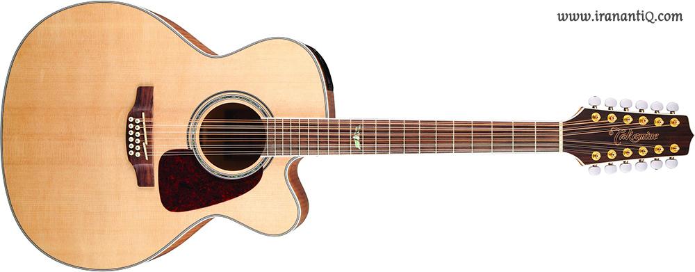 گیتار آکوستیک با دوازده سیم